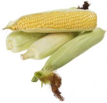 Кукуруза свежая в початках 1шт