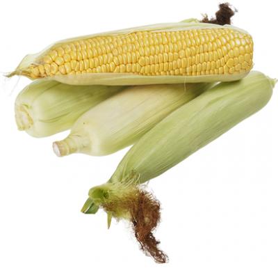 Кукуруза свежая в початках 1шт_0